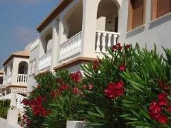 Испания дения купить дом